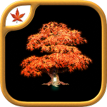 Juego de Aventura Fire Maple Games Collection para Android